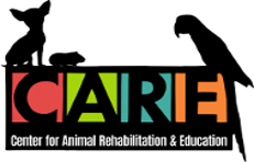 Center for Animal Rehabilitation and Education